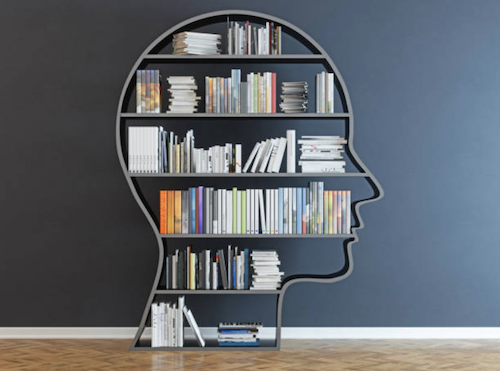 get to know each other in a long-distance relationship - head shaped shelf with books